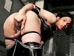 Mistress Foxi takes us into her world and shows us exactly what could happen when you step across the threshold into her dungeon of pain and submission.  She will have you crawling across her dirty fl from TS Kink