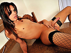 Big cock shemale diva Lohany Mickelly is with us today for the first time and she's looking stunning in her fishnet stockings and high heels. Watch this hottie strip down slowly teasing the camera unt from Shemale Solos