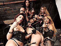 The dark Mistresses Avilla, Jackeline, Joy, Nicolly are at it again in their dungeon of pain. They have this guy in an interesting version of a stock. They keep him restrained as they fuck his mouth w from Shemale Punishers
