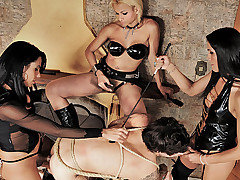 These shemale dommes know exactly how to treat a submissive man. Watch as they give him a lesson in pleasure and pain. These three dominant shemales put this guy in ropes and make him to submit to the from Shemale Punishers