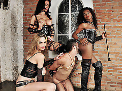 Clips of uniform, bdsm, action categories