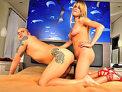 Everyone loves big cock shemale star Duda Gaucha, especially when she is in wild hardcore action topping a guy. Watch as Duda feeds this dude her mega cock and gets balls deep into his tight ass befor from Mega Cock Tranny