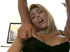 Free tranny tube porn clips